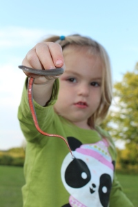 Nora and a red bellied northern leaf snake.